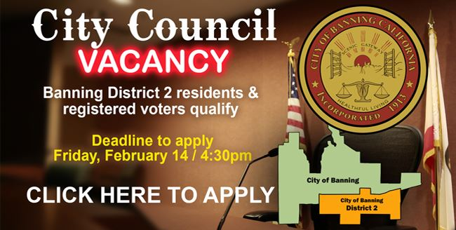 council vacancy web